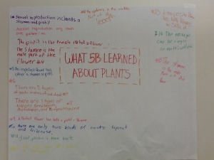 Lit Circles, Chalk Talk, Biomes, Peer Conferences 037