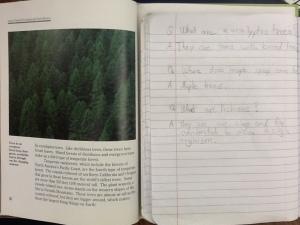 Read Ahead, Food Chains & Webs, Lit Circ, Guide Rd 003
